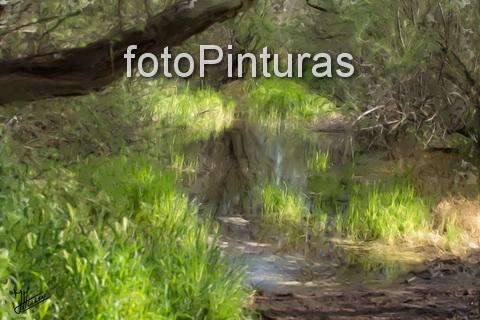 Permalink to:… Fotopinturas …