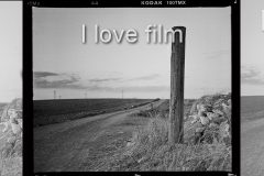 I Love film